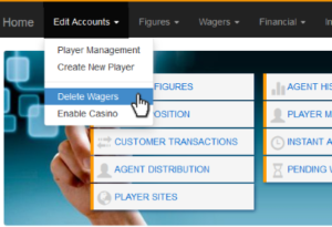 Player Activity in Your Bookie Reports